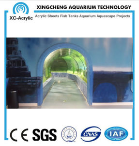 Customized Large Aquarium Tunnel Acrylic Material Shark Tank Project pictures & photos
