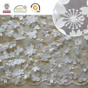 Mesh Chiffion Embroidery Lace Dress Garment Lace Fabric pictures & photos