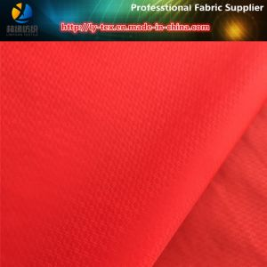 Nylon Jacquard Fabric, 20d/400t Semi-Dull Nylon Taffeta Jacquard Fabric pictures & photos