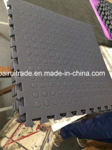 EVA Hole Interlocking Mat, EVA Mat, Drainage Mat pictures & photos