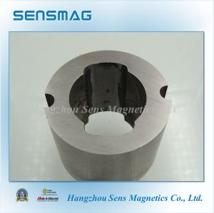 Manufacture Customized Permanent AlNiCo Ring Magnet for Motor Generator pictures & photos