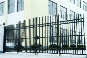 Hot Sale-Quality Exterior Security Decorative Wrought Iron Fence Gate 2 pictures & photos