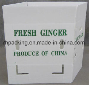 Corflute Fruit Box with Silk Screen Printing/PP Folding Box/PP Corrugated Box 3mm 4mm 5mm pictures & photos