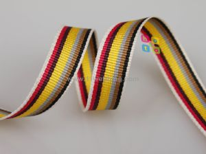 Customized Polyester Webbing for Bag Strap pictures & photos