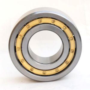 Cylindrical Roller Bearing (NJ219) Rolling Bearing pictures & photos