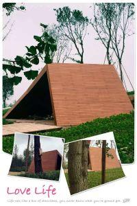 Strand Woven Bamboo Outdoor Decking pictures & photos