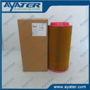 Ayater Supply Screw Air Compressor Air Filter Element pictures & photos