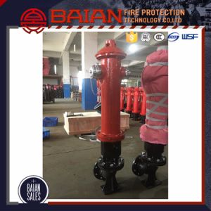 Fire Hydrant System pictures & photos