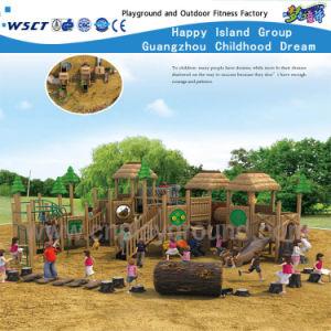 Children Amusement Park Wooden Playground Equipment (HF-10001) pictures & photos