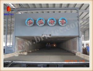 Fully Automatic Clay Brick Tunnel Kiln pictures & photos