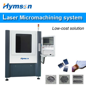 China High-End Fiber Laser Micromachining Microcut System for Processing pictures & photos