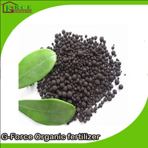 Excellent Quality Soil Improved Organic Fertilizer Nitro Humic Acid pictures & photos