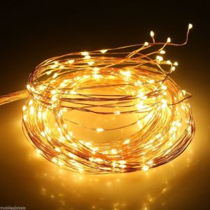 Multi Branch String Flexible 10 M 12 V Copper Wire LED String Fairy Light Party Decor pictures & photos