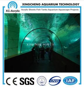 Large Marine Aquarium Sea Park Project Price pictures & photos