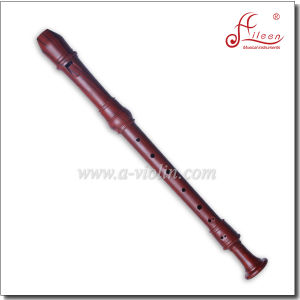 8-Hole Baroque Color Plastic Alto Recorder Flute (RE2430B-2) pictures & photos