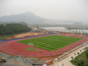High School Training Sport Running Tartan Tracks (IAAF, CE standard) pictures & photos