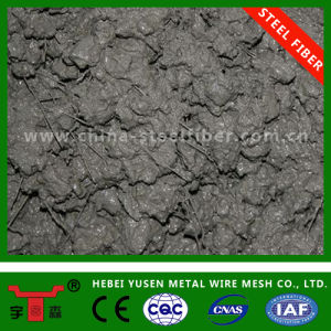 Steel Fibre in Hebei Yusen pictures & photos
