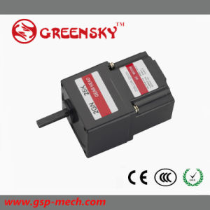 15W 60mm Brushlss DC Motor for Industry Use pictures & photos