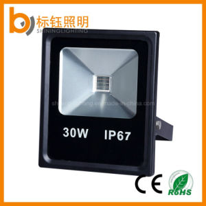IP67 High Brightness CRI>80 >90lm/W 30W Outdoor Garden LED Floodlight pictures & photos
