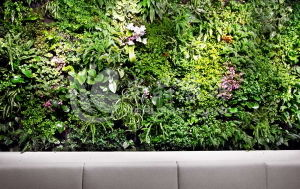 High Quality Artificial Plants and Flowers of Green Wall Gu-Wall14425931409800 pictures & photos