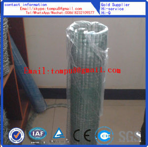 Wire Mesh Factory Direct Sale pictures & photos