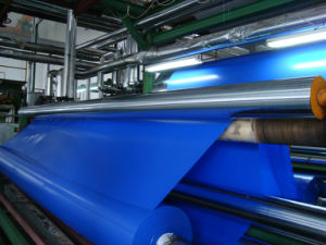 High Tear Strength PVC Tarpaulin Fabric Tb002 pictures & photos