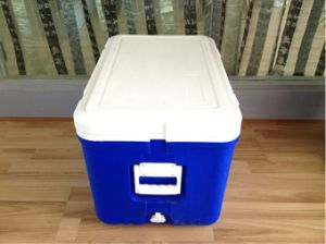 52L Ice Cooler Box for Outdoor Fishing with Handle (HWC-W52)