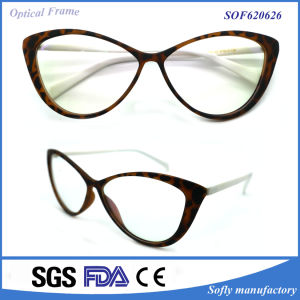 Colorful Tr90 Optical Eyeglasses Frames with Competitive Price pictures & photos