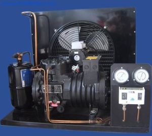 Compressor/ Copeland Compressor/ Copeland Condensing Unit for Cold Room pictures & photos