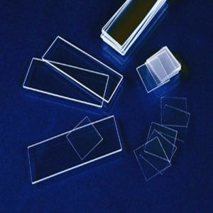 Microscope Slides (GS-1) pictures & photos