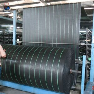 China Wholesales Black PP Anti Weed Mat pictures & photos