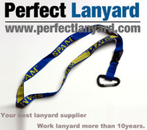 Jacquard Weave Lanyard with Climbing Button Carabiner pictures & photos