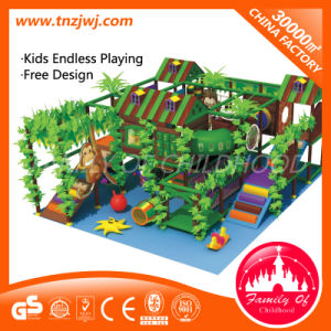 Jungle Gym Equipment Indoor Soft Play Centre for Preschool pictures & photos