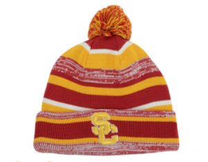 2017 Fleece Inside Warn Beanie Hat Knitted Hat pictures & photos