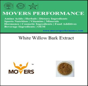 Good Price Plant Extract - White Willow Bark Extract pictures & photos