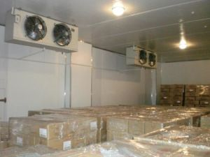 Second Hand Cheap Cold Room/Blast Freezer pictures & photos
