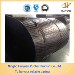 Conveyor Rubber Belting Usde in Power Plants pictures & photos
