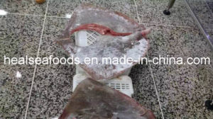 Frozen Skate Fish Wing Ray Fish Stingray pictures & photos