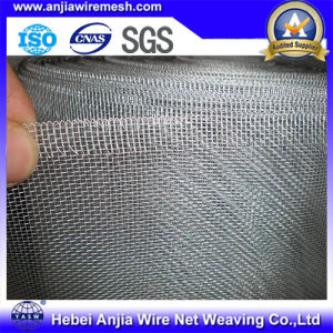 Galvanized Iron Wire Mosquito Net for Window and Doors pictures & photos