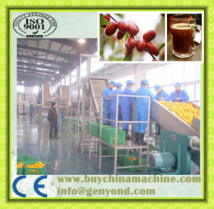 Popular Dates Juice Production Line pictures & photos