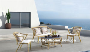 Wood Color PE Rattan Wicker Outdoor Sofa Set Bp-8021A pictures & photos