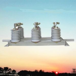 1000A 12kv Indoor Service Isolating Switch (GN19-12/1000-31.5) pictures & photos