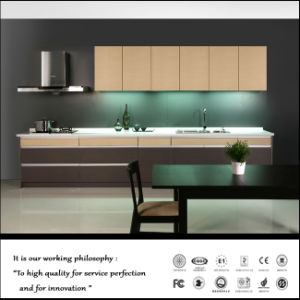 Wholesales Home Furniture Kitchen Cabinets (ZH-4066) pictures & photos