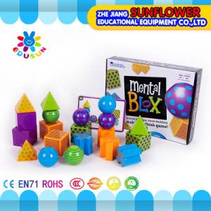 Geometrical Model (Educational equipment) , Children Educational Toys