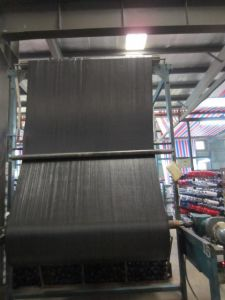 High Quality 100g PP Woven Geotextile for Silt Fence with Ce pictures & photos