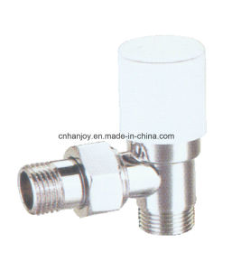 High Quality Radiator Valve Angle (NR-3021) pictures & photos