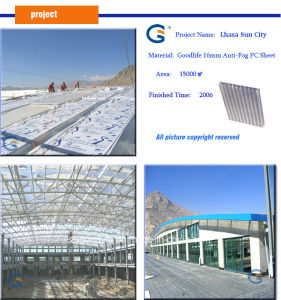 Polycarbonate Hollow Sheet for Swimming Pool Cover pictures & photos