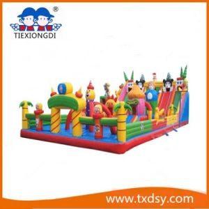 Funny Bouncy Castle, Amusement Park Inflatable Castle Txd16-212463 pictures & photos