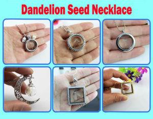 Dandelion Seed Glass Orb Terrarium Necklace