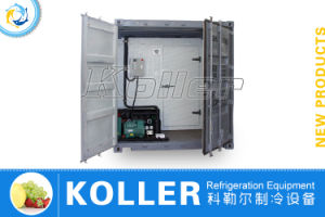Containerized Freezer for Meat/Fish pictures & photos